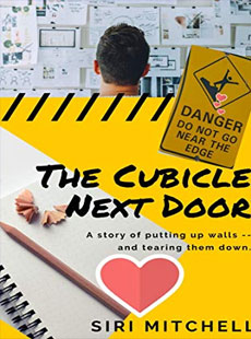 The Cubicle Next Door - Amazon Link